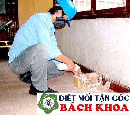 Dịch vụ diệt mối mọt tận gốc tại Hà Nội