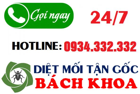 Hotline công ty diệt mối tận gốc tại Ninh Bình